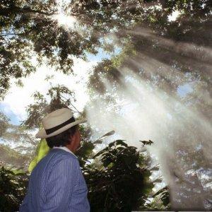 """画像1: コロンビア「エル・ロブレ農園 〜メサ・デ・ロス・サントス〜 - Mesa de los Santos """"Organic""""」(250g袋入)"""